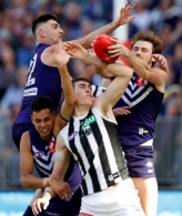 AFL 2018 Round 23 - Fremantle v Collingwood