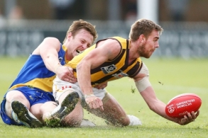 VFL 2018 Preliminary Final - Williamstown v Box Hill