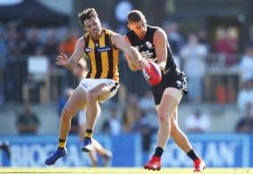 AFL 2019 Media - Hawthorn v Carlton Practice Match