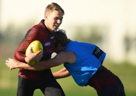 AFL 2019 Training - Essendon 240619
