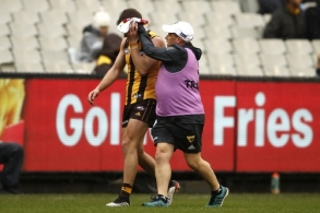 AFL 2019 Round 15 - Hawthorn v West Coast