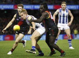AFL 2019 Round 17 - Essendon v North Melbourne