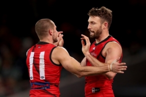 AFL 2019 Round 18 - Adelaide v Essendon