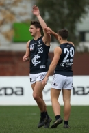 VFL 2019 Round 17 - North Melbourne v Northern Blues
