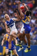 AFL 2019 Round 19 - West Coast v North Melbourne