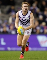 AFL 2019 Round 19 - Western Bulldogs v Fremantle