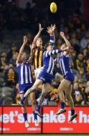 AFL 2019 Round 20 - North Melbourne v Hawthorn
