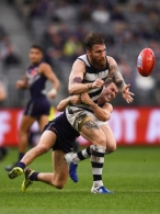 AFL 2019 Round 20 - Fremantle v Geelong