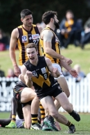 VFL 2019 Elimination Final - Werribee v Box Hill