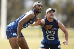 AFL 2019 Training - Geelong 191119