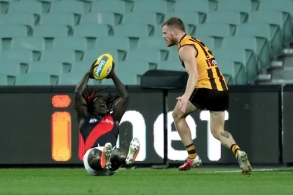 AFL 2020 Round 14 - Hawthorn v Essendon